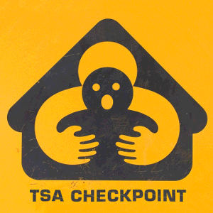 Touched by the TSA